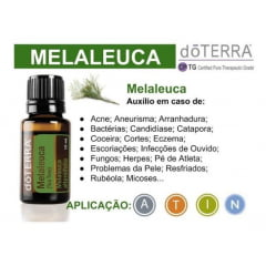 DoTerra Tea Tree Melaleuca alternifolia Óleo Essencial 15 ml